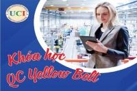 Khóa Học Chuyên Gia Kiểm Soát Và Đảm Bảo Chất Lượng Online tháng 8-2021 tại TPHCM (QC Yellow Belt  Online)