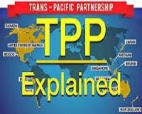 """Gia nhập TPP Việt Nam """"sợ"""" gì và cần gì?"""