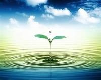 [Infographic] Nước không phải là tài nguyên vô tận